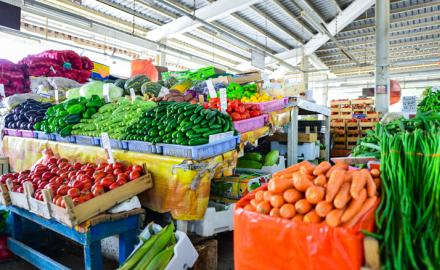 Winter markets in Qatar are well-stocked with locally produced vegetables, says official