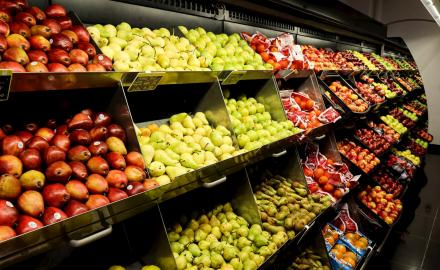 Qatar attaches great importance to food security, says Minister
