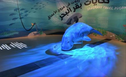 Everything you need to know about Seagrass Tales, Dugong Trails exhibition at NMoQ