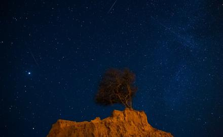 WATCH: Qatar Living goes meteor hunting