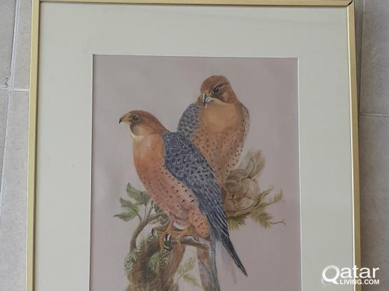 Falcons Painted on Japanese Silk