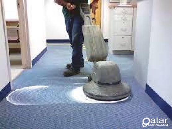 Carpet shampoo Free home service