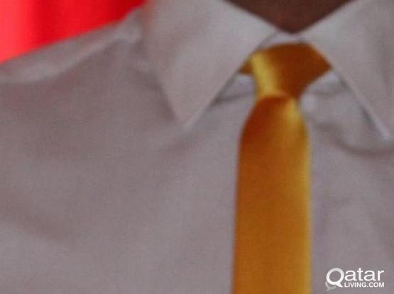 Skinny Ties (Bought from USA)