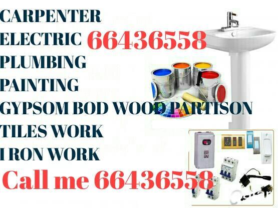 Painter. Carpenter. Palmber & maintenance work
