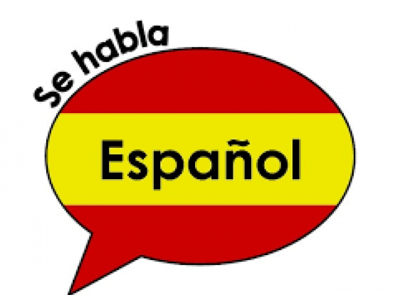 Spanish <> Arabic Translator & Interpreter