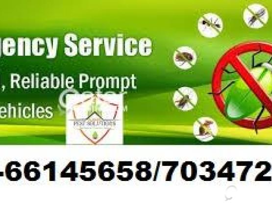 Thermaltech Pest control 70347224