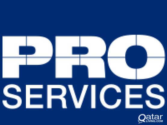 PRO SERVICES & TENANCY AGREEMENT 55311523