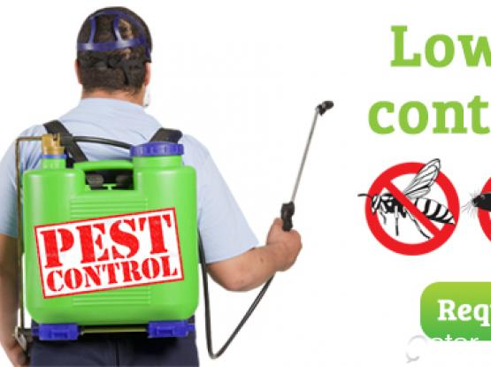 Hutty Pest Control Call now! 70347224/66145658