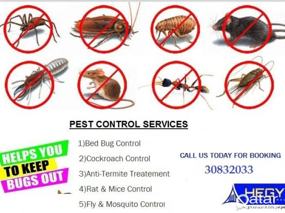 Pest Control Service Available Now : 77598405