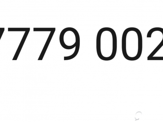 The Number 77779002 for sale