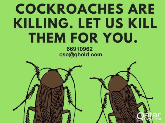 Your Leading Pest Control Team in Qatar!
