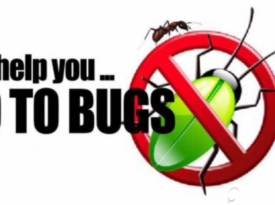 Pest Control Services - Call and whatsapp - 55957958