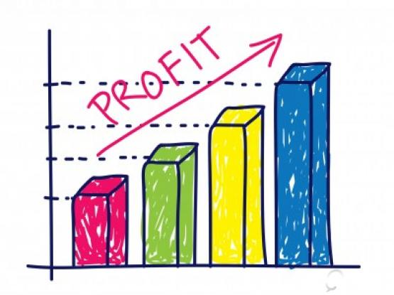 Profit Improve. GUARANTEED Business Consulting