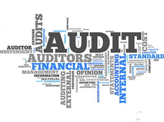 Audit report with taxcard free