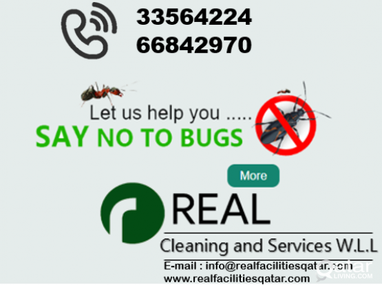 Call 31221363 : Eliminate household cockroaches / bedbugs with odourless chemical