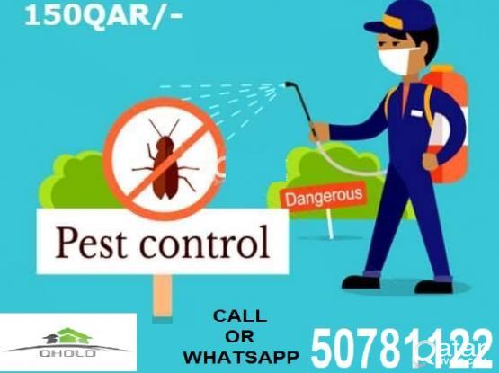 completely Pest control service  مكافحة الحشرات نهائيا