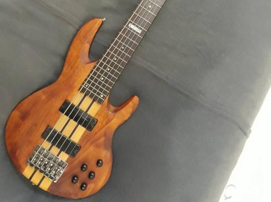 LTD B-416SM (6 Sting Bass Guitar)