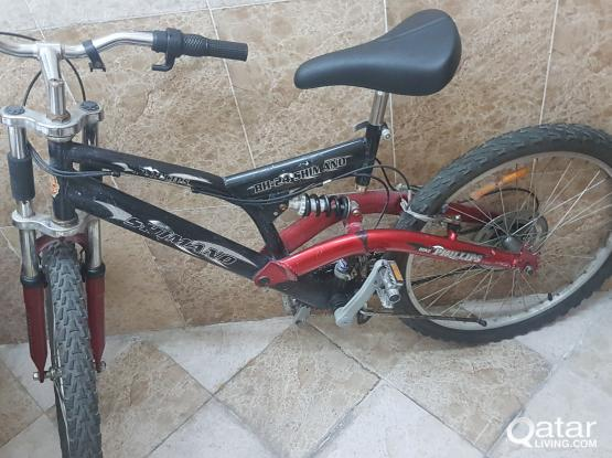 Bicycle for Child/Adult for Sale