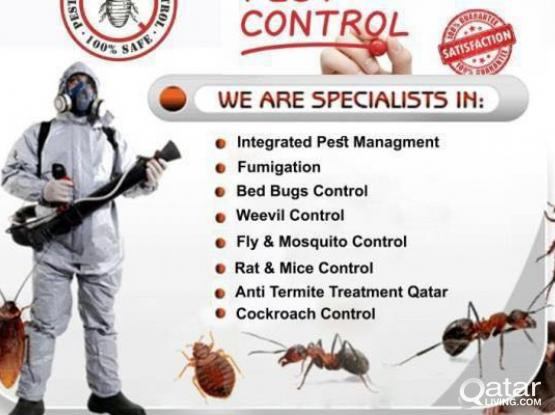 Pest control services for all insects