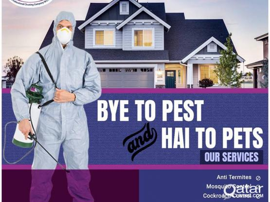 Pest #Control insects #termites #Cockroach #Bed Bug and #rodents #Services