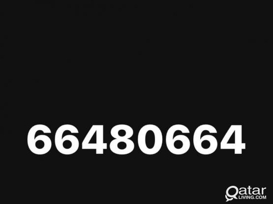 66480664