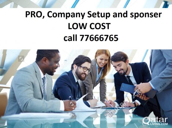 Company Setup and sponsor at low cost