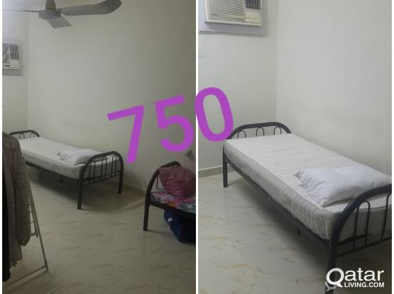 1 Bed Spacer for Ladies Only