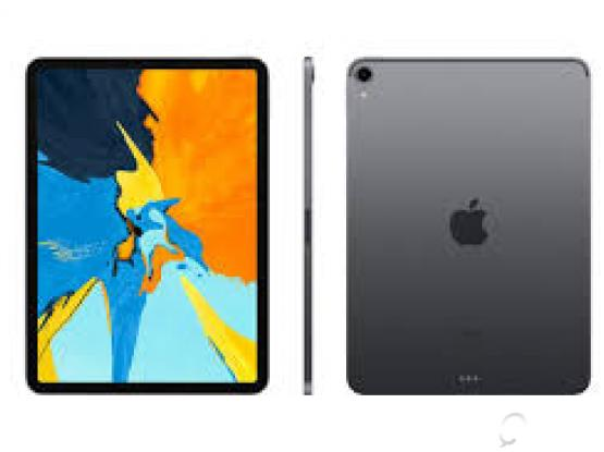 Ipad pro 256 cellular wifi 11inch  brand new unwanted gift