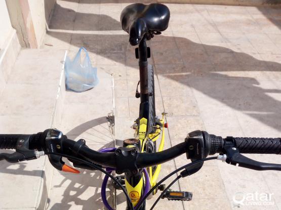 Phillips bike