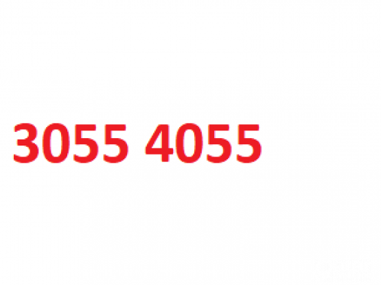 Fancy Phone number for sale: 3055 4055
