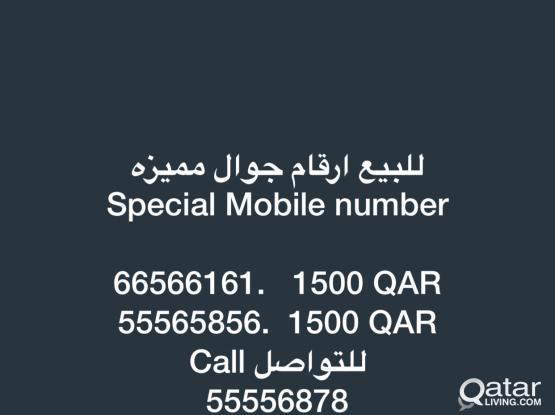 66566161. & 55565856.