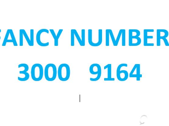 FANCY NUMBER 3000 9164