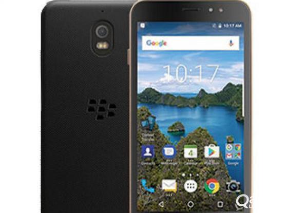 Blackberry aurora sale or swap