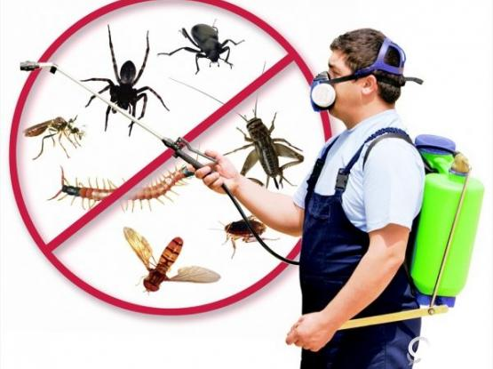 Cleaning & Pest Control Services (40% Off)