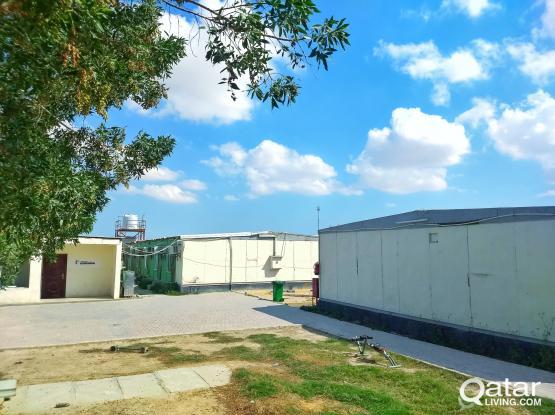 Labour Camp at AL-WUKAIR (Cheapest Rate Ever)