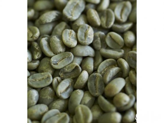 COFFEE BEANS - AA Grade Arabica Plantation