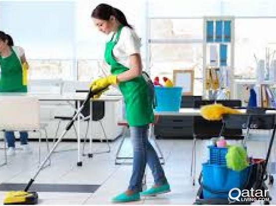 Pest Control Services- Best Service In Town
