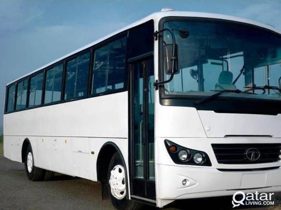 66 SEATER BUS BRAND NEW 2019 FOR RENT