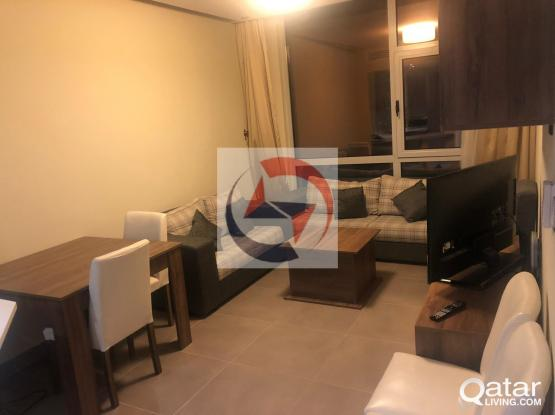 Amazing 2 BR Furnished + 1 time cleaning free