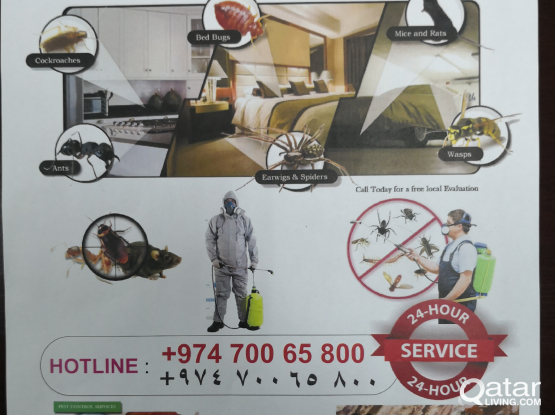 All in all pest control services