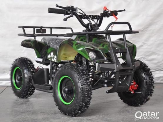 800W Electric Beach Vehicle 12 inch Aluminum Wheeled Four-wheeled Off-road Vehicle Four-wheeled Moto