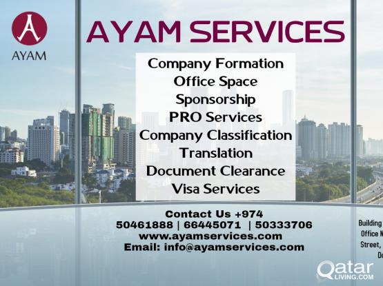 Company Classification and Other Services