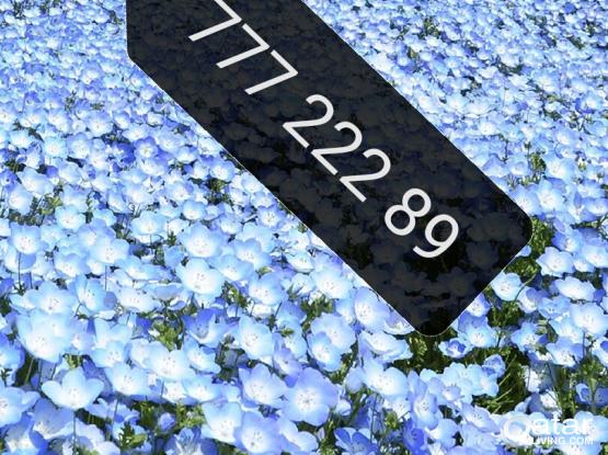 Ooredoo Number very special