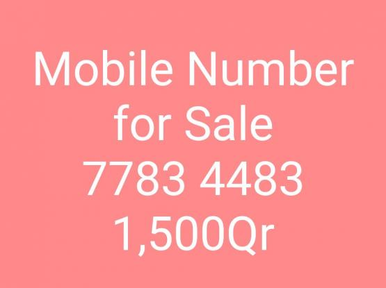 Mobile Number 77 83 44 83