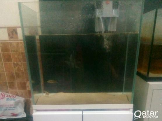 Aquarium /Fish tank for sale