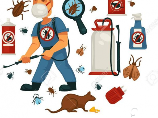 looking for pest control call us: