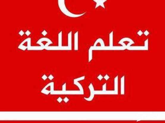 Professional TURKISH teacher