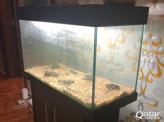 Fish Tank for Sale Okay Condition 150QR Final