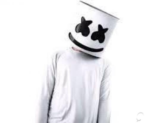marshmello concert ticket for sale 2 tickets