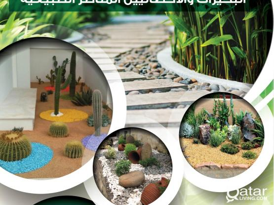 Gardning & Indoor plant maintenance